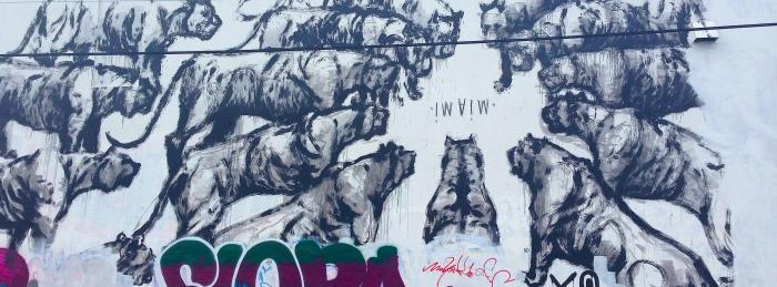 meowmi
