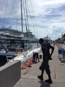 The Cruise Docks