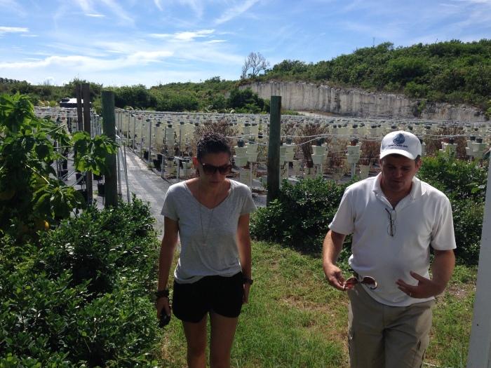 Exploring the hydroponics at Schooner Bay