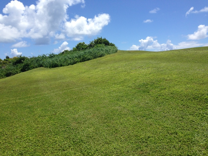 But honestly it takes $1.5 million to maintain a golf course in the Bahamas - a dune should not look like a Windows computer desktop.