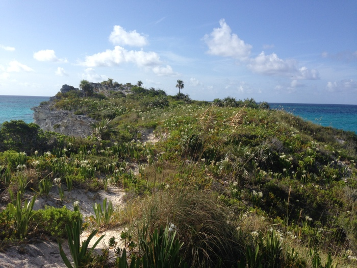 the very southernmost point of Eleuthera!