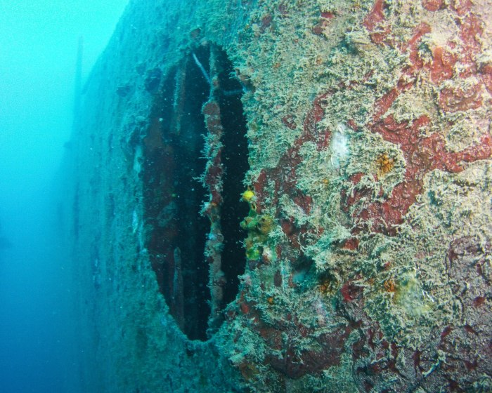 yesterday's second dive took us to the HMS Sattakut - a wreck!
