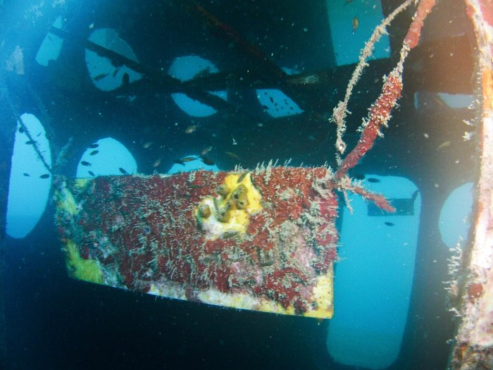 many people justify sinking wrecks as attractions and habitat. wrecks can make bad substrate for hard corals, though.